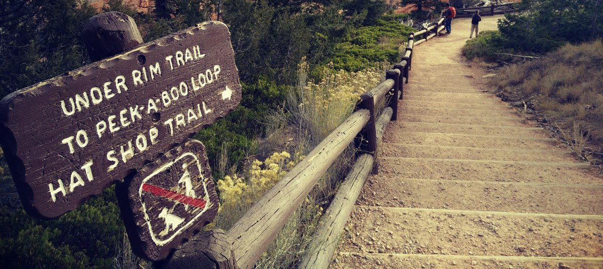 Lire l'article : Second jour à Bryce Canyon : Peek a boo loop & Mossy cave trail